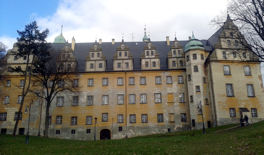 zamek oleśnica
